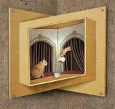 Omöjlig fönster och katt Arkivbild