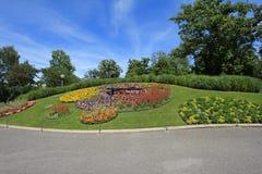 χρονομετρήστε το λουλ&om Στοκ εικόνες με δικαίωμα ελεύθερης χρήσης