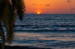 美丽的日落om海洋或海运海滩 免版税库存图片