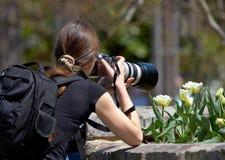 Om een beeld van bloemen te nemen stock foto