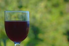 om odosobnione waite czerwonego wina Obraz Stock