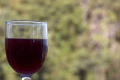 om odosobnione waite czerwonego wina Fotografia Stock