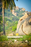 Om sign in front of a boulder. And palm tree, hampi (India Royalty Free Stock Images