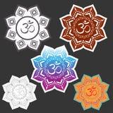 OM unterzeichnen herein geometrischen Halo mandala Verschiedene Wahlen Blumenhintergrund mit Gras stock abbildung