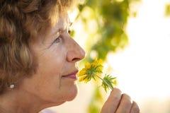 Oma riecht eine gelbe Blume Stockbild