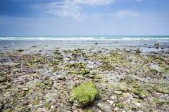 Oman beach Stock Photo