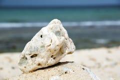 Oman beach stone Royalty Free Stock Image