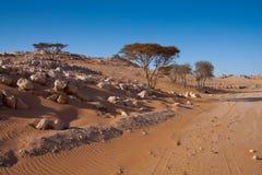 Oman desert Stock Image
