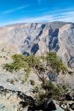 in Oman die alte Gebirgsschlucht Stockfotos