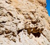 in Oman die alte Gebirgsschlucht und -schlucht der tiefe bewölkte Himmel Stockfotos