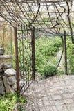 Oman garden Saiq Plateau Royalty Free Stock Image