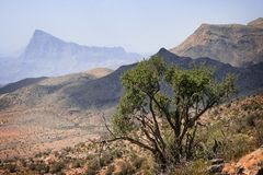 Oman: Jabal Shams Plateau Stock Photography