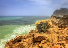 Oman-Küstenlinie Stockbild