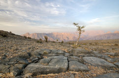 Oman-Landschaft Lizenzfreie Stockfotos