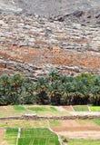 Oman Mountain Village Royalty Free Stock Photography