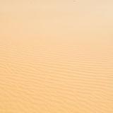 In oman the old desert and the empty quarter abstract  texture l Royalty Free Stock Photography