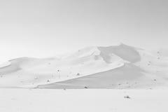 in oman old desert  rub al khali the empty  quarter and outdoor Stock Photos
