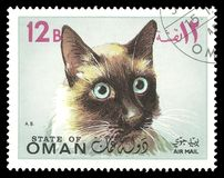 Oman, stamps, cat Royalty Free Stock Images