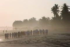 Oman: Sunset at Salalah beach Royalty Free Stock Photos