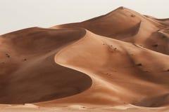 Oman: Töm fjärdedelen arkivbilder