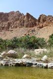 Oman Wadi Royalty Free Stock Image