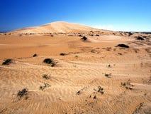 Omani desert. Dunes between Shannah and Al Ashkharah Stock Photos