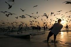 Omani fishermen Stock Photography