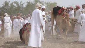 Omani mężczyzna dostaje przygotowywający ścigać się ich wielbłądy na zakurzonym kraju zbiory