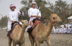Omani mensen die kamelen berijden op een stoffige plattelandsweg Royalty-vrije Stock Afbeeldingen