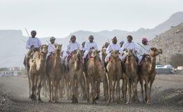 Omani mensen die kamelen in een platteland van Oman berijden Royalty-vrije Stock Fotografie