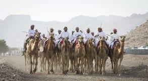 Omani mensen met hun kamelen in een platteland Stock Foto's