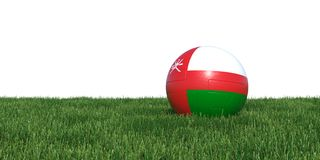 Omani Oman flag soccer ball lying in grass Stock Images