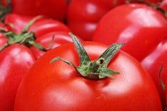 Omato tekstura Świeża duża czerwona pomidoru zbliżenia tła fotografia Stos pomidory Pomidoru wzór z pracownianymi światłami Obrazy Royalty Free