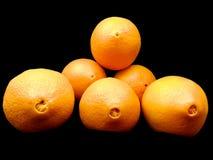 Ombligos de naranjas frescas imagen de archivo