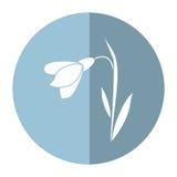 Ombra decorativa del fiore di Amaryllis royalty illustrazione gratis