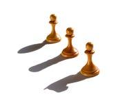 Ombra del cavaliere Rook e del vescovo della colata del pegno di scacchi tre immagini stock libere da diritti