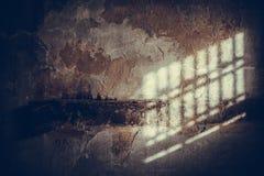 Ombra della grata sulla parete Immagine Stock Libera da Diritti