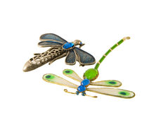 Ombra della libellula Fotografie Stock