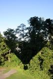 Ombra della mongolfiera Fotografie Stock