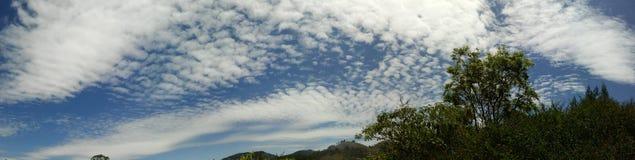 Ombra della nuvola ooty Fotografie Stock Libere da Diritti