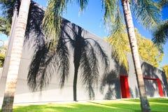 Ombra delle fronde della palma su una parete esterna Fotografia Stock