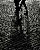 Ombra dopo la pioggia fotografia stock libera da diritti