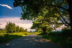 Ombra e Sun della strada campestre fotografia stock libera da diritti