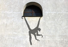 Ombra sulla scimmia della parete Immagini Stock Libere da Diritti