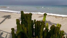 Ombra sulla spiaggia Fotografia Stock Libera da Diritti