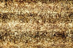 Ombrage l'abstraction sur le panneau de polycarbonate Images stock
