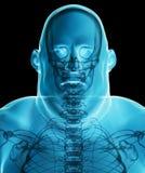 ombrage masculin de rayon X de l'illustration 3d gros, conce médical de soins de santé Photographie stock libre de droits