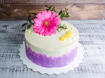 Ombre  cream cheese cake with pink gerbera and eucalyptus Stock Photo