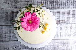Ombre  cream cheese cake with pink gerbera and eucalyptus Stock Photography