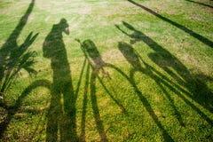 Ombre d'un cycliste sur l'herbe Photographie stock